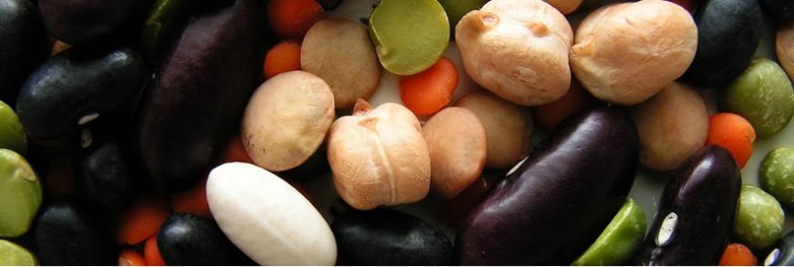 Konzervovaná zelenina